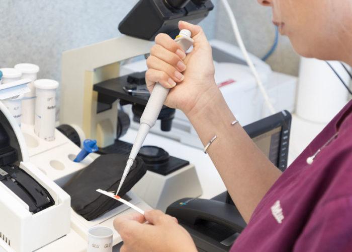 clinique-veterinaire-V24-laboratoire--yvelines